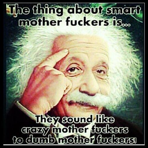 smart_mf_albert