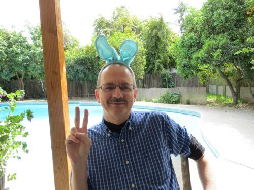 Peace, and bunnies