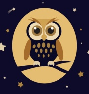 night-owl-vector